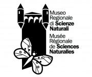 logomuseo 2002