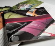 Brochure e catalogo vini Fattoria il Gambero