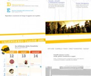 cm_casehistory2008_int