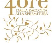 Progettazione logo Olio 4Ore Monte Schiavo