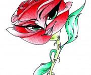 Rose la rosa rossa