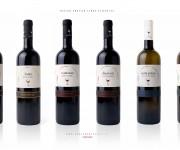 creazione linea etichette per bottiglia bordolese classica