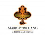Logo per azienda vitivinicola 09 (2)