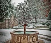 torino e la neve_006