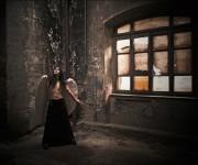 Angel Falling Again