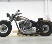 specila bike