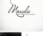 Logo Meridio