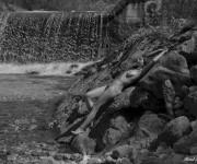 Zora Immagine modella nudo artistico Donna nuda in riva al mare
