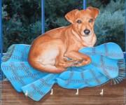 Cane con copertina blu