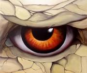 Draco Eye