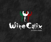 Logo per Winecalix 05