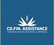 logo cofin 03