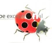 Pieghevole Be Exceptional