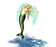 Sirena alata - olio su carta