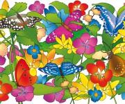 farfalle - pubblicato su Pimpa