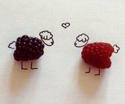 sheep berries