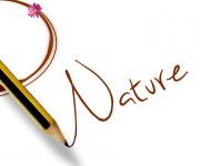 nature 03