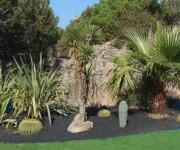 Isola piante grasse- quarzo blu&nero