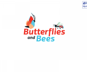 butterflies and bees