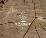 Excellentwood - lavorazioni in legno pregiato logo_8