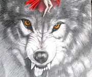 cappuccetto rosso e il lupo - tecnica: matite