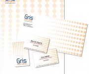 GRIS_SERVICECI