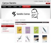 Webnode > Portfolio > Sandro Carrus