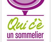 Logo per AIS - Reggio Calabria