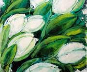 Geometries of white tulips