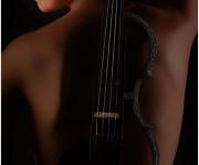 Laura Violino