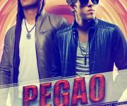flyer pegao