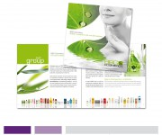 BBG Cosmetics . Corporate brochure