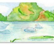 Il lago delle oche.