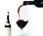 scarpamood vino12