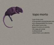 topomorto