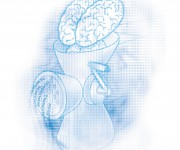 Illustrazione-Xenia-Frapp-di-cervello