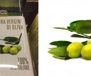 Illustrazione Olio di Oliva