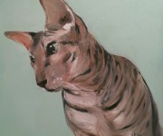 One night sketch - Sphinx cat